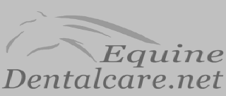 Equine-Dentalcare-icon
